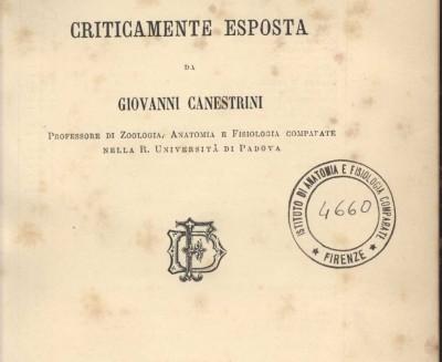 """""""La teoria di Darwin"""" di Giovanni Canestrini"""