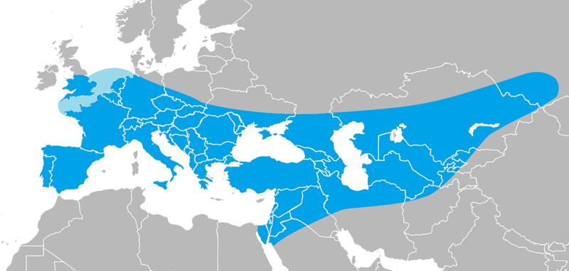 800px-Range_of_Homo_neanderthalensis