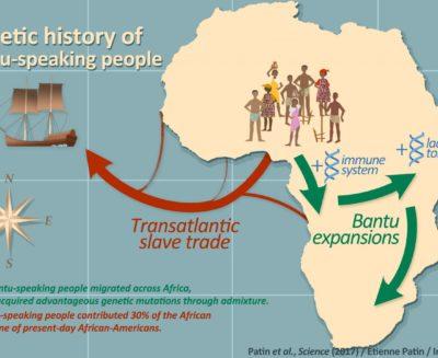 L'africa e le migrazioni: un nuovo studio fa luce sul popolamento dell'africa sub-sahariana