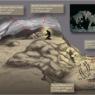 Il supporto dei tracciatori San del Kalahari alla paleontologia