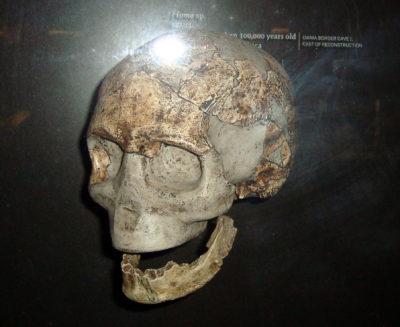 Nuove ipotesi sull'origine di Homo sapiens