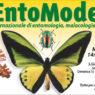 49a edizione di Entomodena