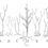 Gradualità e coevoluzione per le radici delle piante terrestri?