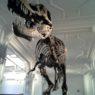66th Symposium of Vertebrate Palaeontology and Comparative Anatomy