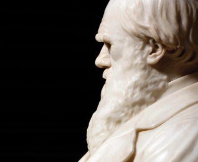 Darwin Day, le leggende metropolitane sull'evoluzione