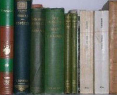 Consigli di lettura – inverno 2020