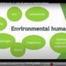 Sono disponibili le registrazioni dei seminari <i>Estetica ecologia e biodiversità</i> (primo ciclo)